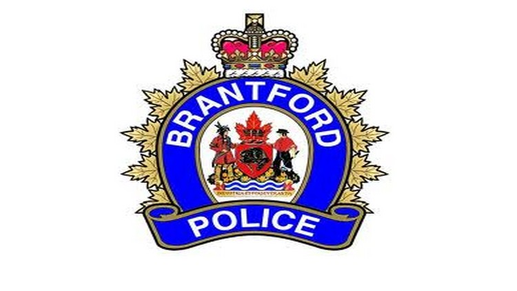 Brantford police have made an arrest following a disturbance downtown.