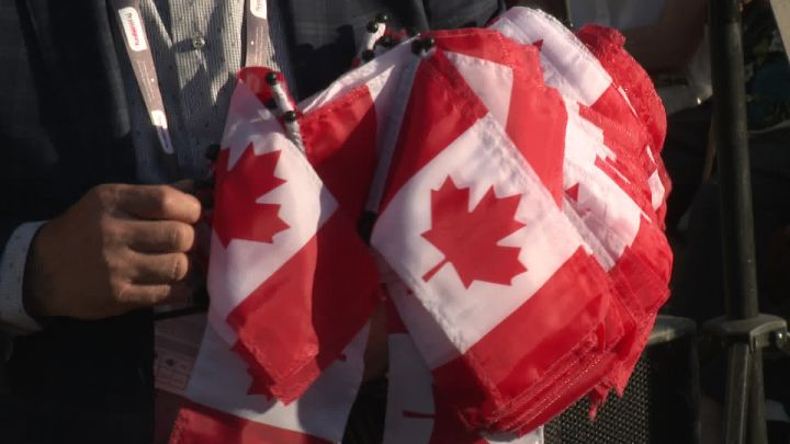 A record number of newcomers settled in New Brunswick in 2019, according to government data.