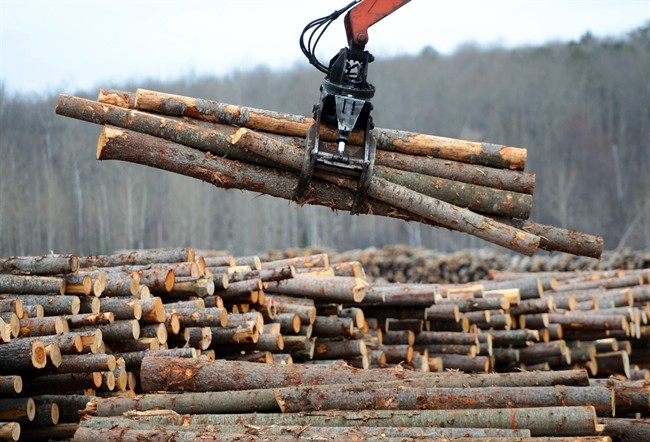 B.C. wildfires are being linked to rising lumber prices and rallying stocks for Canadian forest product companies.