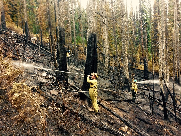 Direct suppression on the north line of the Verdant Creek wildfire.