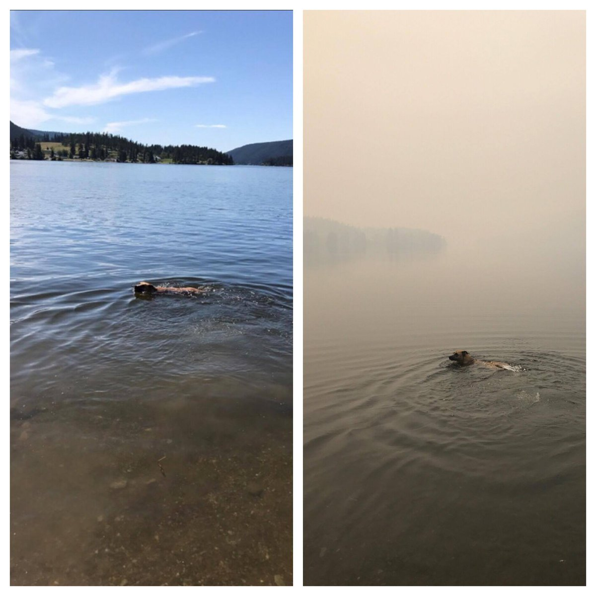 This photo shows the same area in Williams Lake, just one week apart.