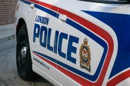 Continue reading: 12 people arrested on outstanding immigration warrants in London
