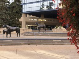 Continue reading: Annual report shows Calgary 'remains on good financial footing'