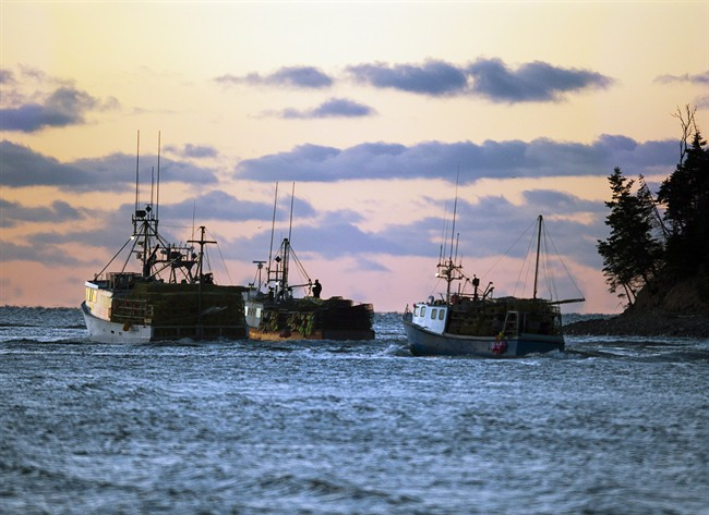 File - Fishing boats loaded with lobster traps head from Eastern Passage, N.S. on Tuesday, November 27, 2012.