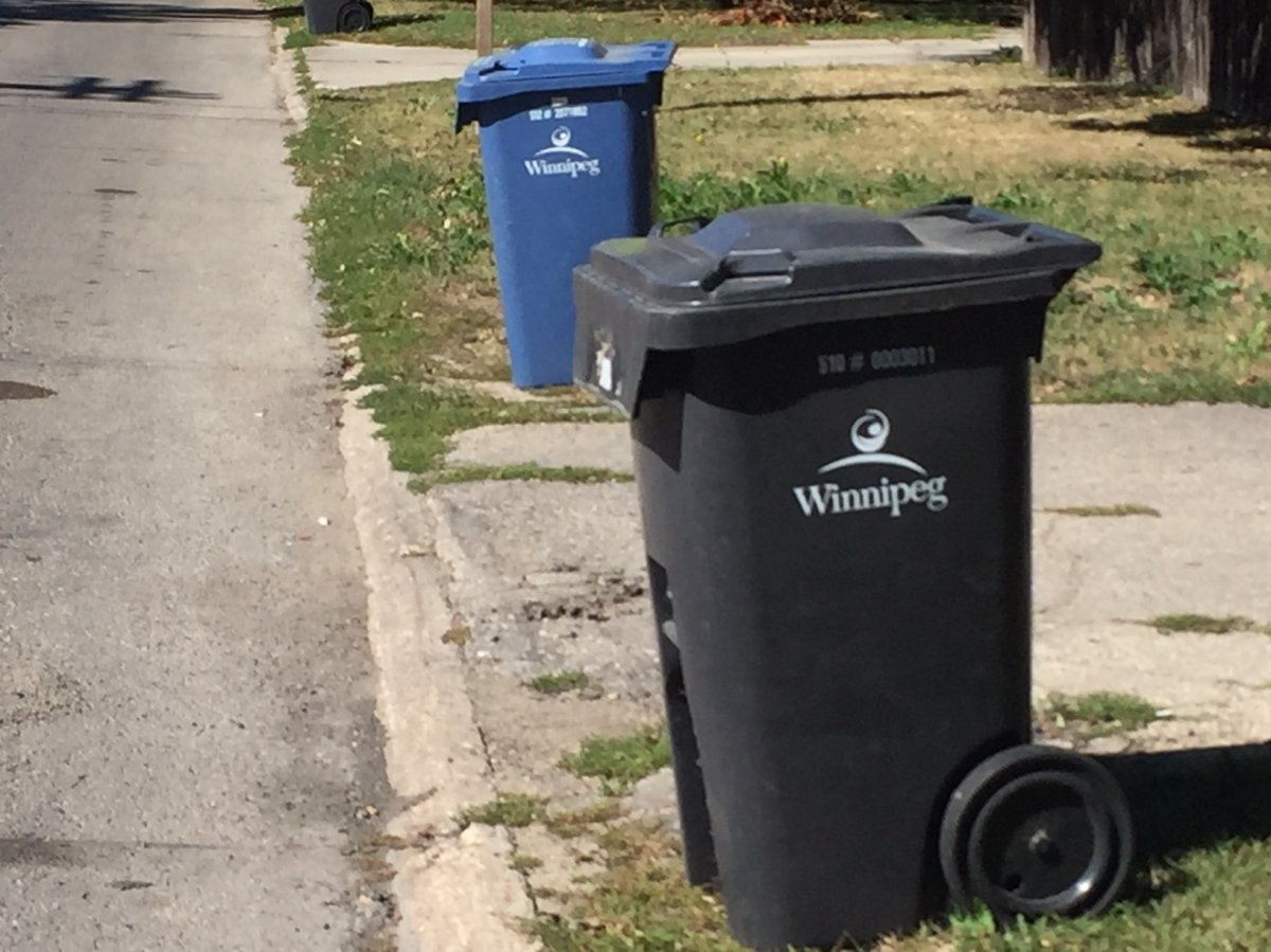 Winnipeg police say a teenage carjacking suspect got stuck in a garbage bin after trying to hide from officers.