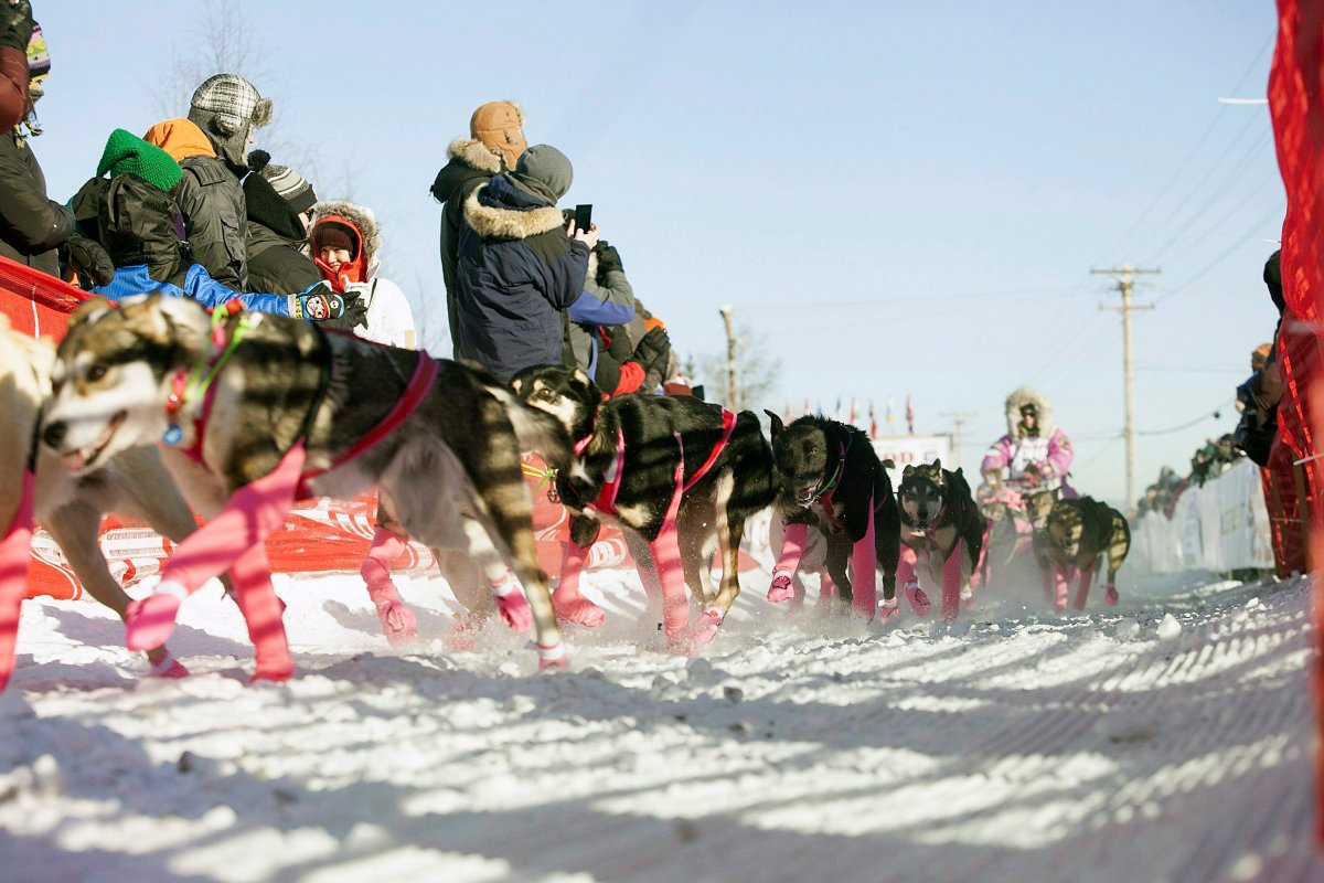 DeeDee Jonrowe leaves the chute at the start of the 45th Iditarod Trail Sled Dog Race in Fairbanks, Alaska, Monday, March 6,2017.