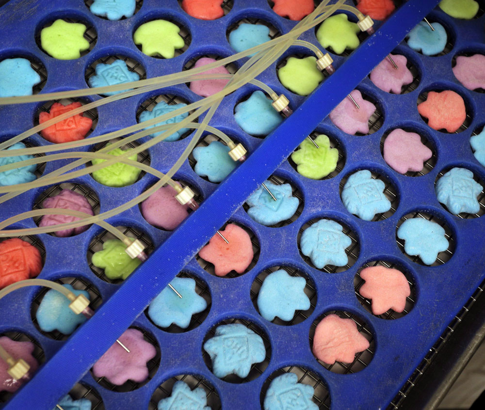 Drops of marijuana extract are placed on candy in the kitchen of AmeriCanna Edibles in Boulder, Colo.