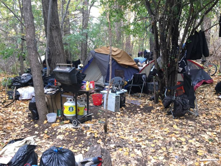 A homeless encampment in Edmonton's River Valley Tuesday, Oct. 10, 2017.