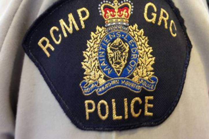 RCMP are investigating after a horse was shot and killed on private property outside of the Village of Senlac, Sask.