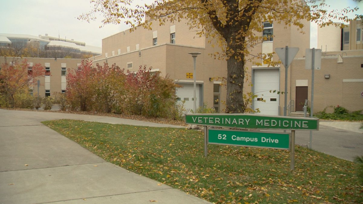 The Alberta government decided to end a 54-year partnership with the Western College of Veterinary Medicine in Saskatoon.