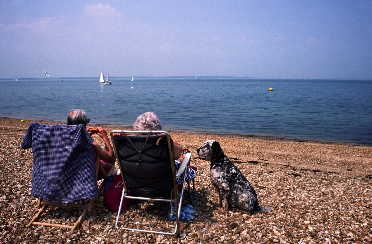 Elderly couple on deckchairs with pet dog look out to sea from Shingle Stone Beach, Isle of Wight.