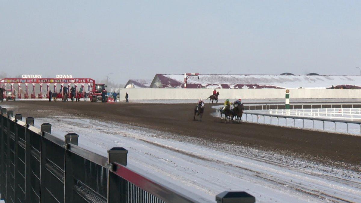 Century Downs Thoroughbred Racing
