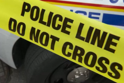 Continue reading: Reports of gunfire in southeast Edmonton prompts search for minivan