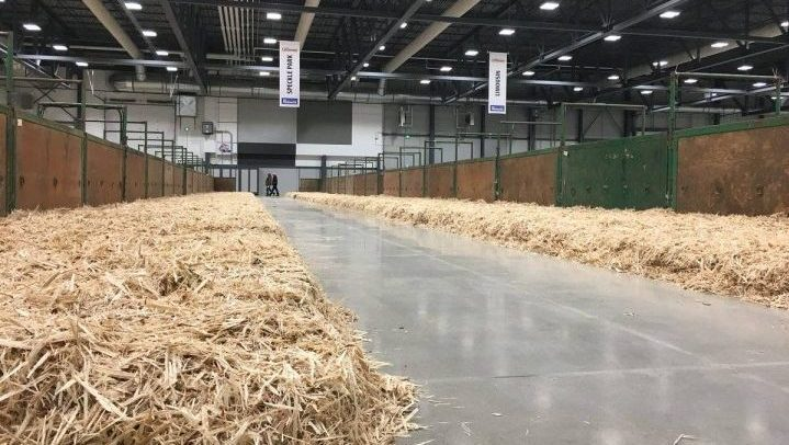 Canadian Western Agribition announced its postponing its Annual General Meeting and Volunteer Appreciation Night in response to COVID-19.