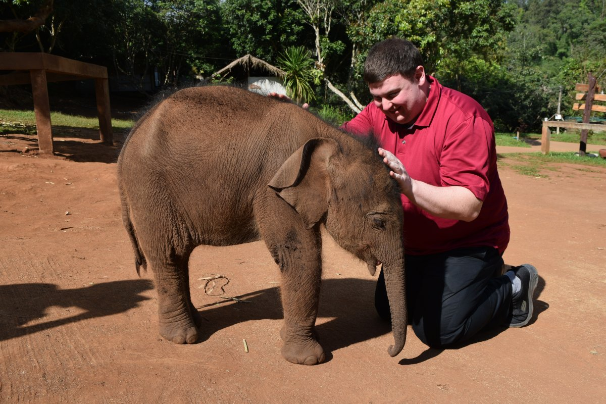 Global News radio host and columnist Andrew Lawton interacts with Gao, a 20-day old Thai elephant at Thailand's Patara Elephant Farm in Chiang Mai.