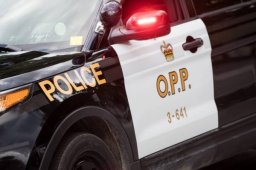 Continue reading: Man dies in Elgin County 'tree cutting incident': police