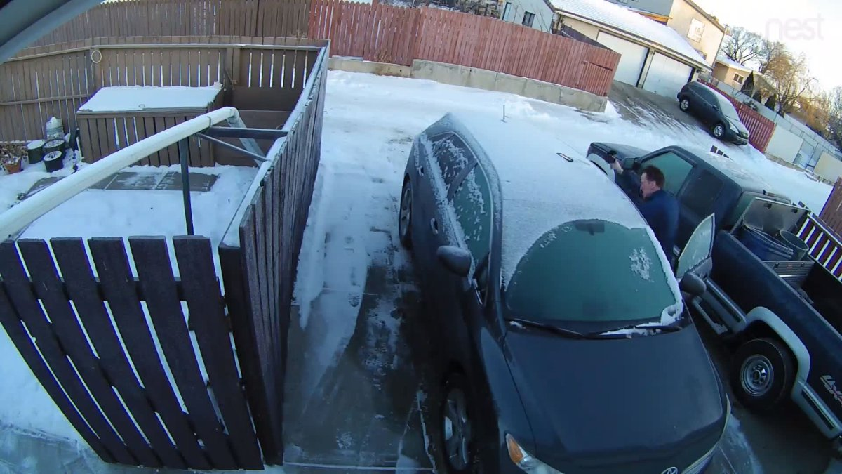 A frame of video depicts an Edmonton man discovering a would-be thief in his vehicle and attempting to drag him out.