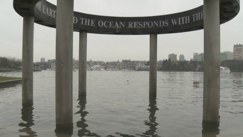 """As Vancouver experiences another """"king tide,"""" city officials are urging local residents to photograph the phenomenon."""