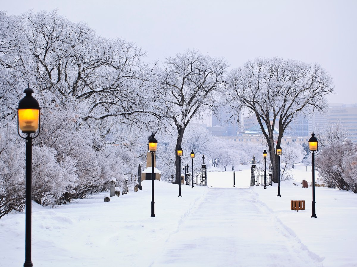 Winnipeg's typically frigid winter is looking downright balmy this year, says an Environment Canada climatologist.