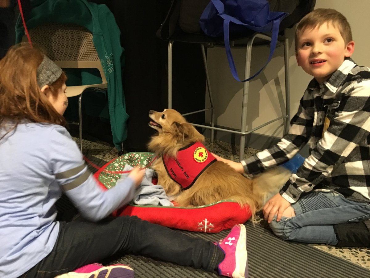 Young Discovery Centre attendees got to meet Terry, one of the visiting therapy dogs, on Saturday, Feb. 17, 2018.