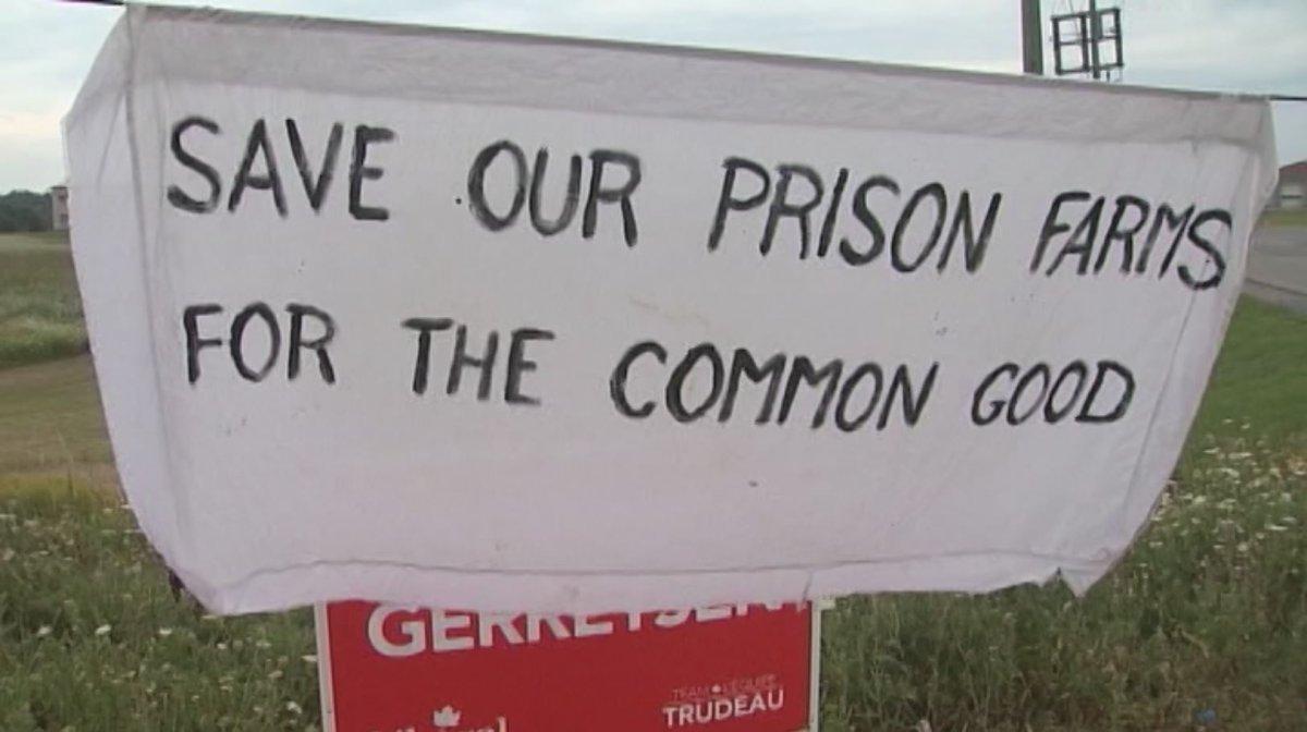 Kingston prison farms to reopen - image