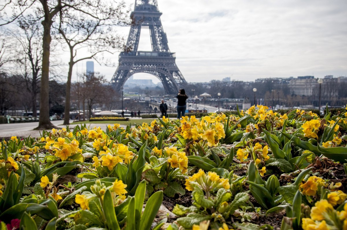 The Eiffel Tower was ranked as the fourth-most popular proposal spot in the world.