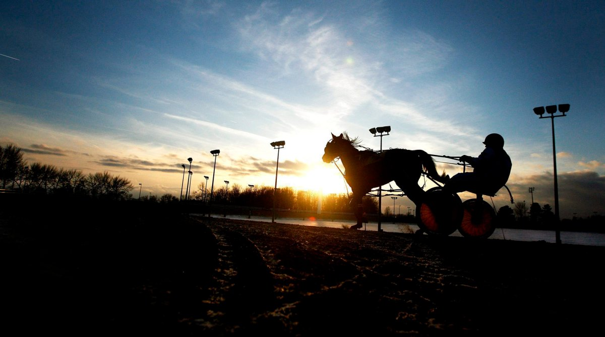 A standard bred racing driver is silhouetted with his horse at sunset, while practicing on Friday, Feb. 9, 2007 at the Flamboro Downs race track in Flamborough, Ont.