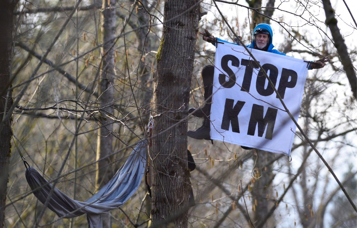 Terry Christenson has nestled his hammock between branches to stop Kinder Morgan form clear cutting.