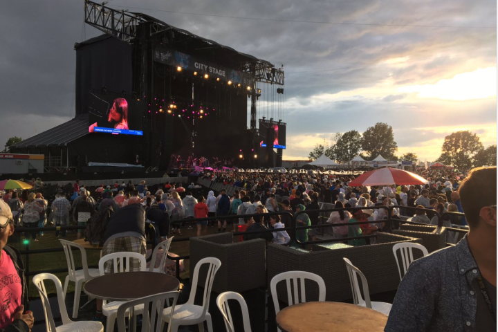 RBC Bluesfest will not run this coming July, but organizers are asking fans to hold onto their tickets for another year, if possible.