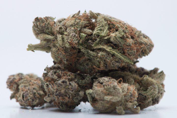 A file photo of marijuana.