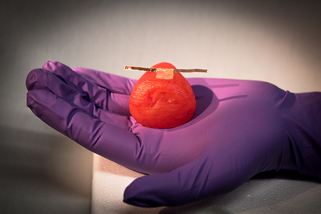 A 3D printed prostate model with tactile sensor.