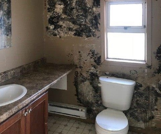 """""""As you walk in the smell gets you and it's like something was living on the walls just creeping over the walls,"""" said Jason Jones of this rental bathroom."""