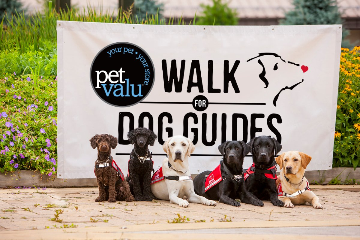 "This spring, residents and their four-legged ""best friends"" are preparing to walk together for the Pet Valu Walk for Dog Guides. Each walk is organized by a member of the community. By participating in the Walk, you can help provide life-changing Dog Guides to Canadians with disabilities. Walk routes are accessible to all. For more information and to register, please visit the website listed."