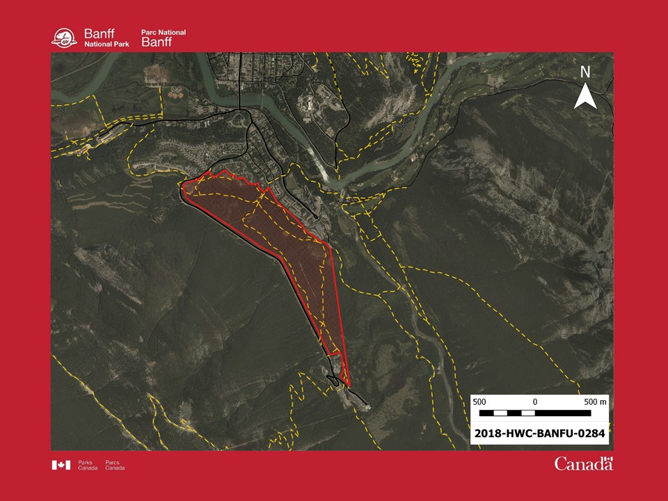 Several trails and recreational areas near the Banff Springs Hotel were closed May 22 after an aggressive black bear was seen in the area.
