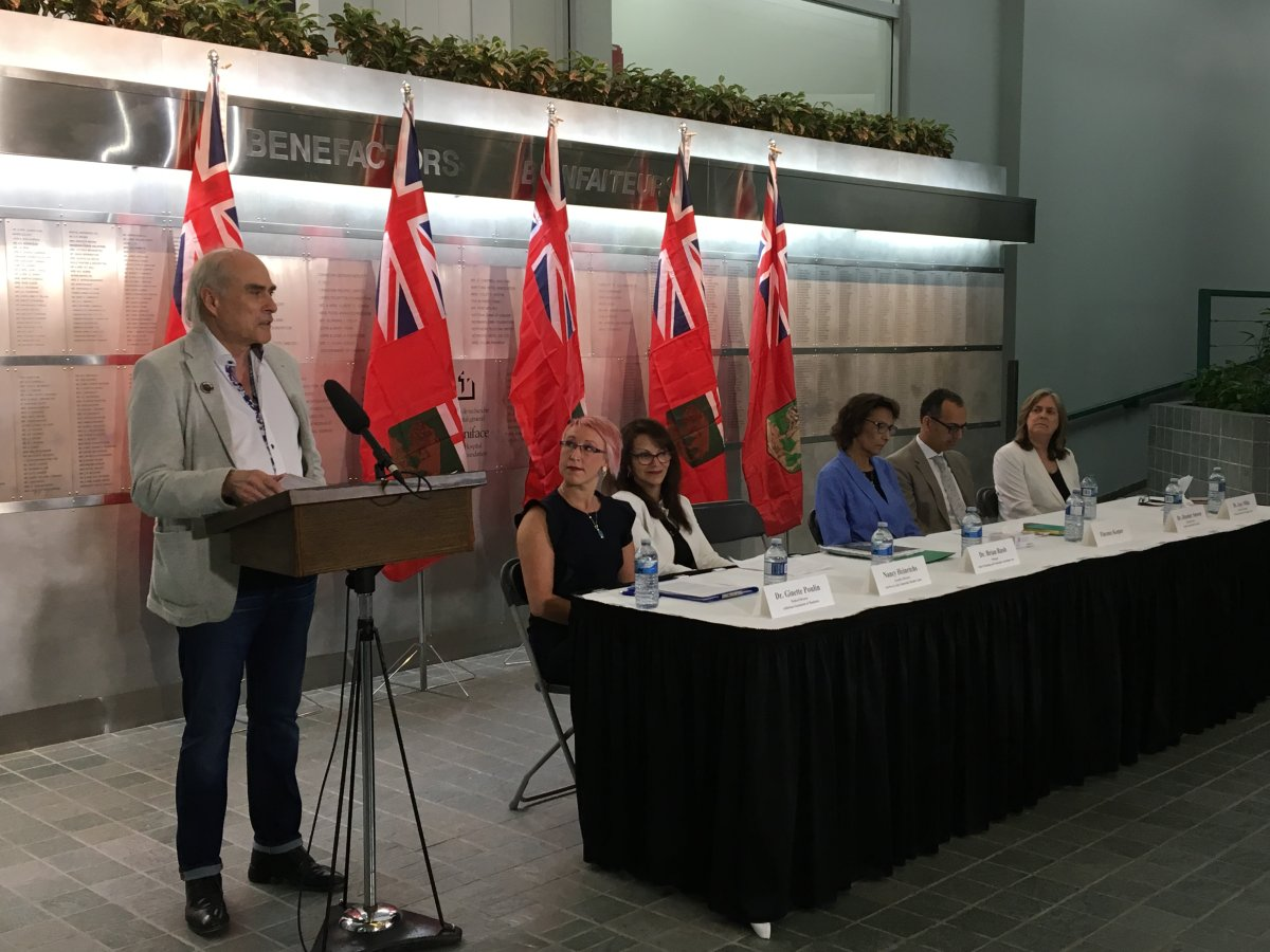 Dr. Brian Rush explains the recommendations included in the Virgo report on mental health and addiction in Manitoba.