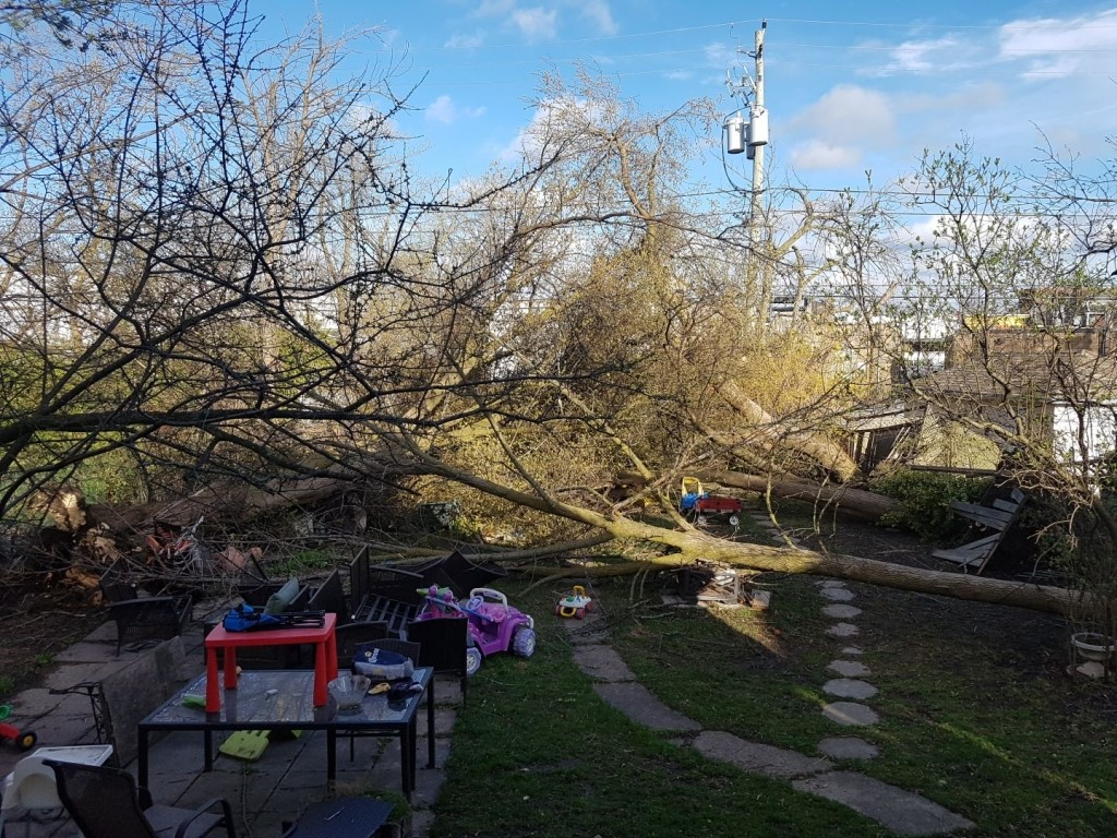 Leanne Johnston's backyard after the wind storm that hit Toronto on May 4.