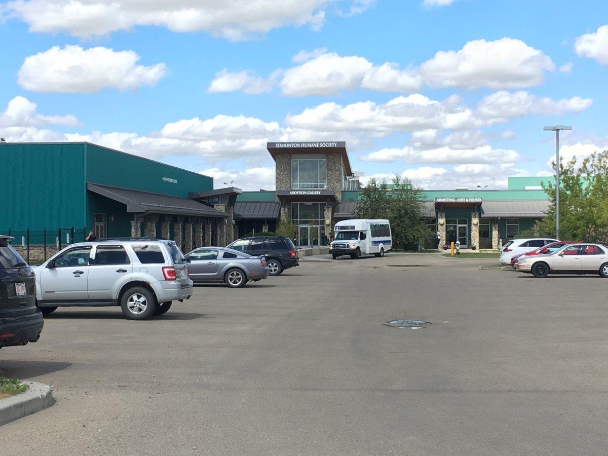 A photo of the Edmonton Humane Society building taken on Monday, June 4, 2018.