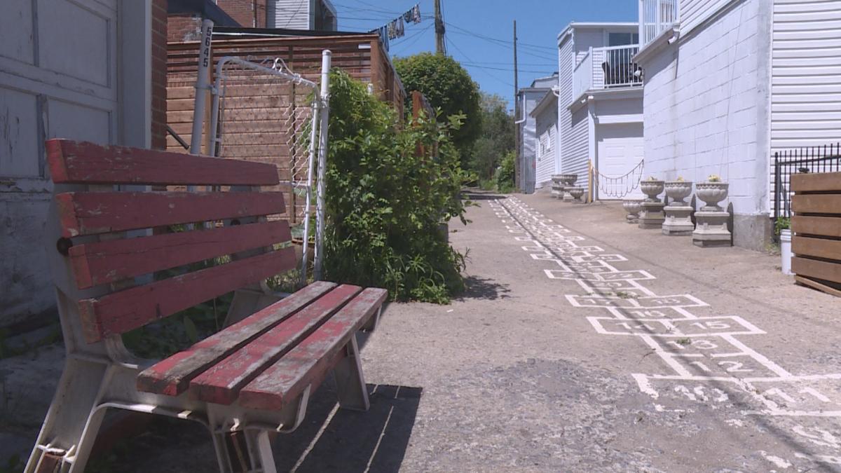 In Montreal's Rosemont neighbourhood, kids play in this green alleyway.