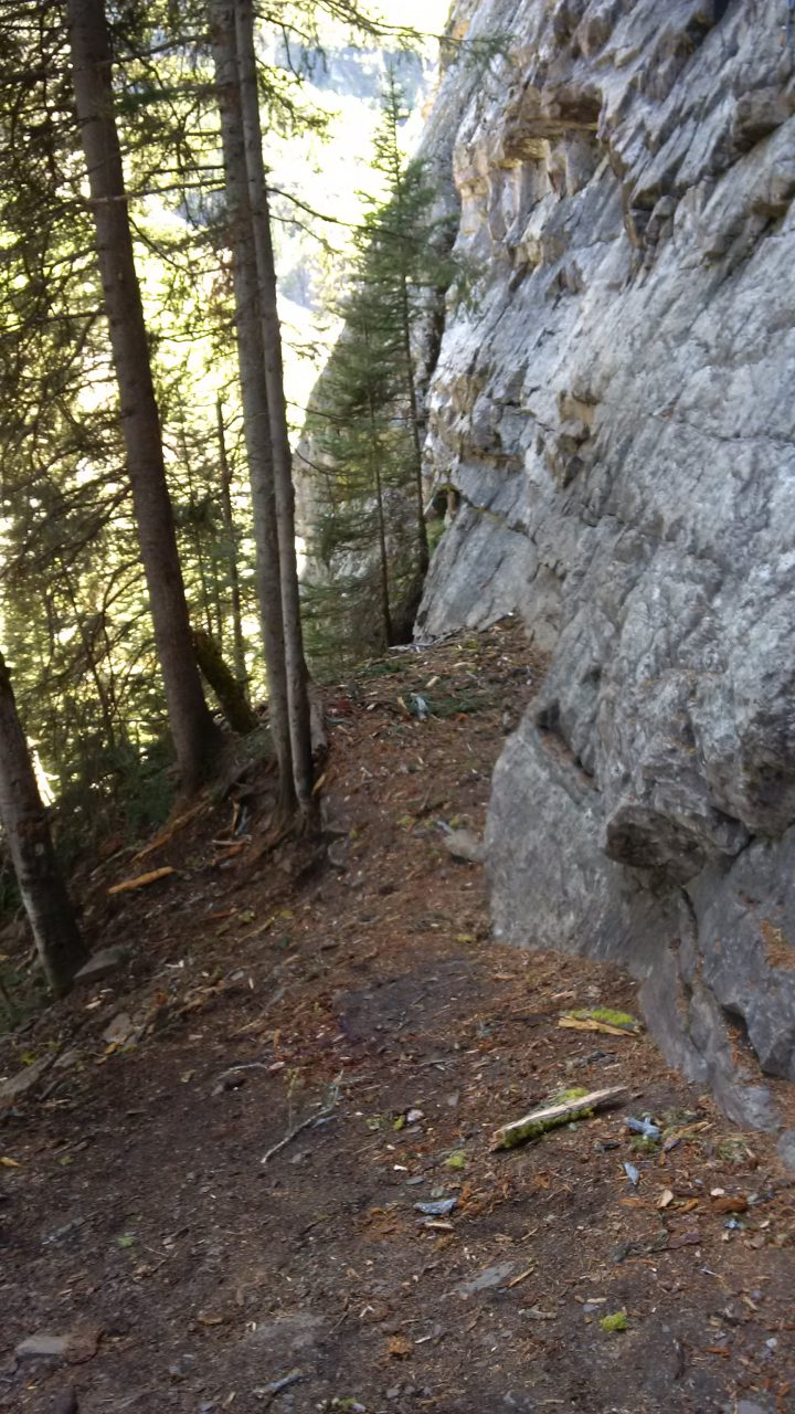 This popular area with hikers called 'Outhouse Wall' in Lake Louise was where three climbers were struck by a tree Tuesday afternoon.