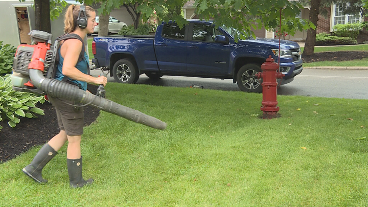 Leaf blowers to become a thing of the past in Beaconsfield.