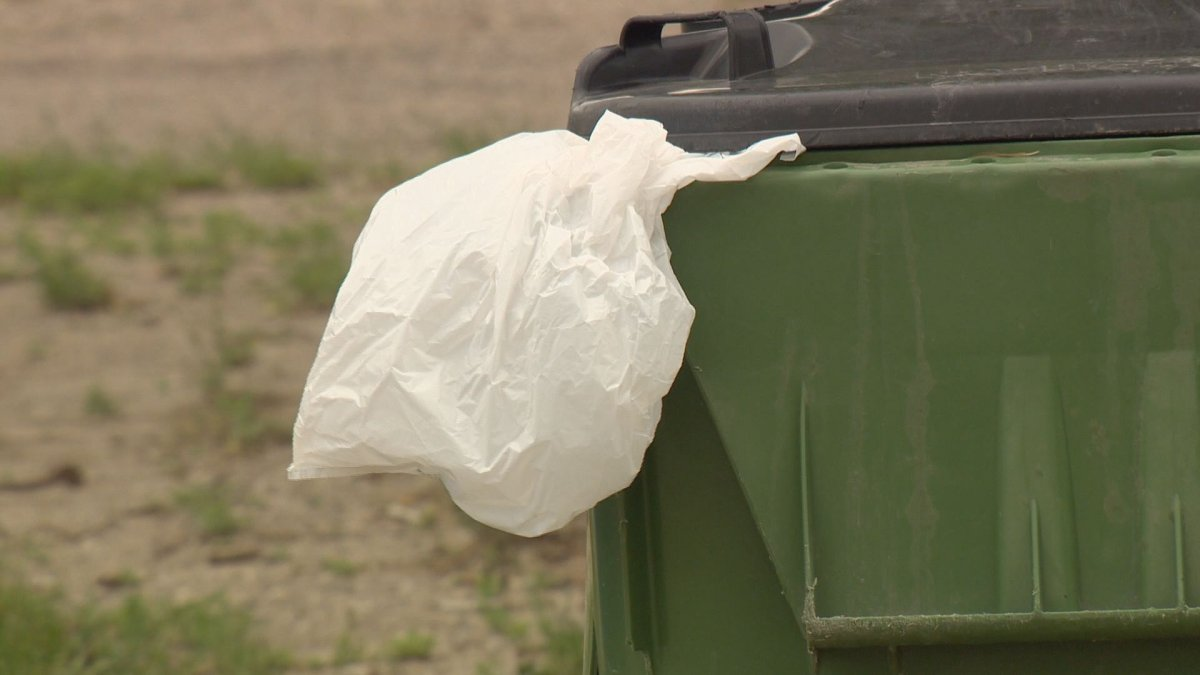 Moose Jaw's Youth Advisory Committee is pushing for a city-wide ban on single-use plastic bags.