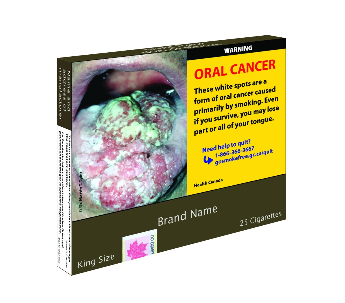 A Health Canada mockup of what plain cigarette packaging might look like if their proposed regulations are passed.