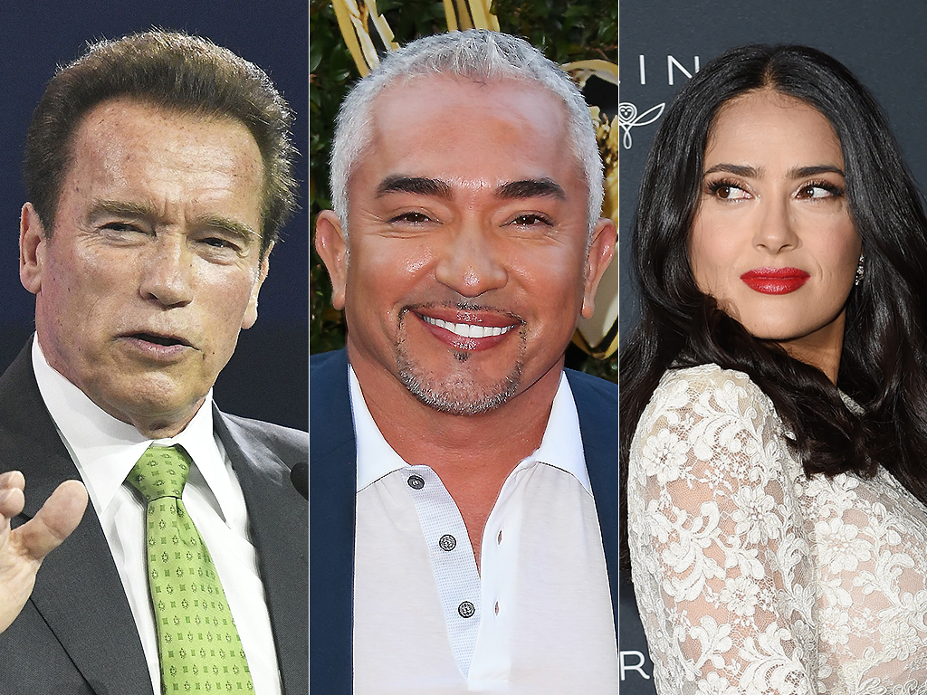 From L-R: Arnold Schwarzenegger, Cesar Millan and Salma Hayek are all immigrants to America.