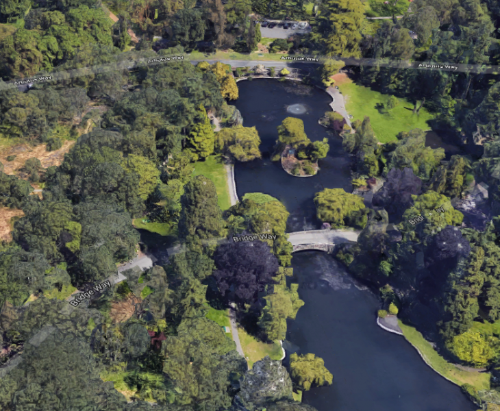 An aerial view of Beacon Hill Park in Victoria.