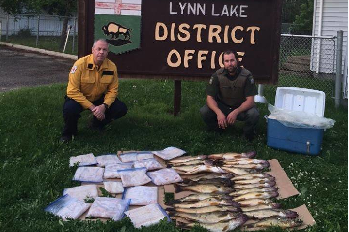 122 walleye were confiscated by MCOA.