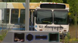 Continue reading: Valentine's Day contest scrapped by Halifax Transit following public outcry