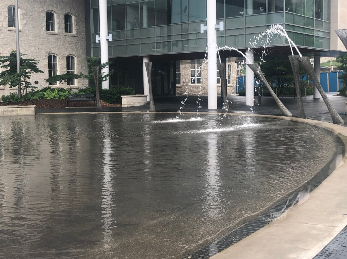 Guelph police say an employee was coughed on while conducting COVID-19 screening at the Market Square wading pool.