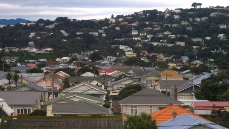 Residential houses are seen in Wellington, New Zealand in this July 1, 2017 file photo.