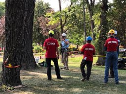 Continue reading: Best Prairie tree climbers hit the canopy this weekend in Kildonan Park