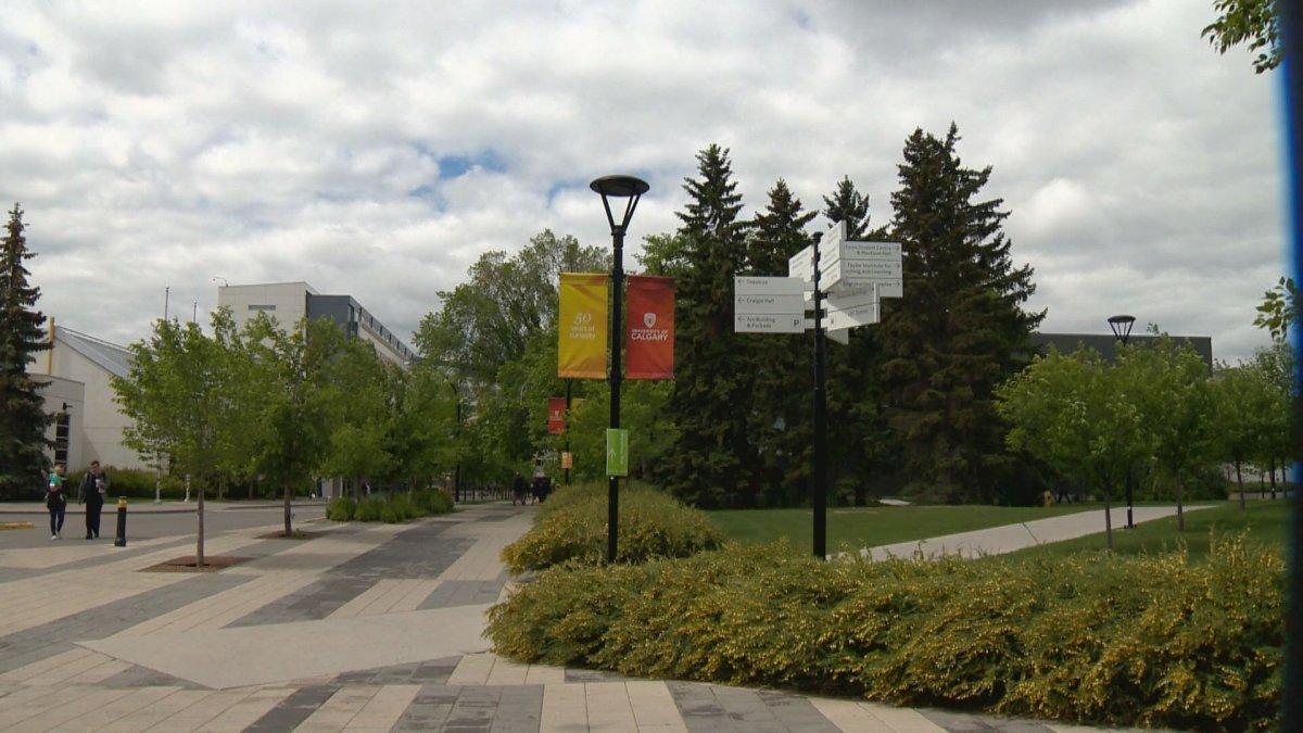 File: The University of Calgary.
